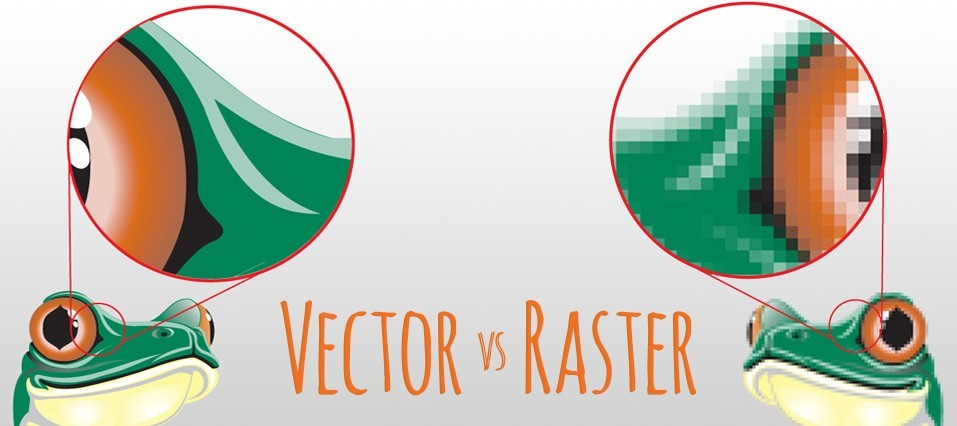 VECTOR FILES RASTER FILES